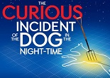 Curious Incident Apollo Theatre - FI